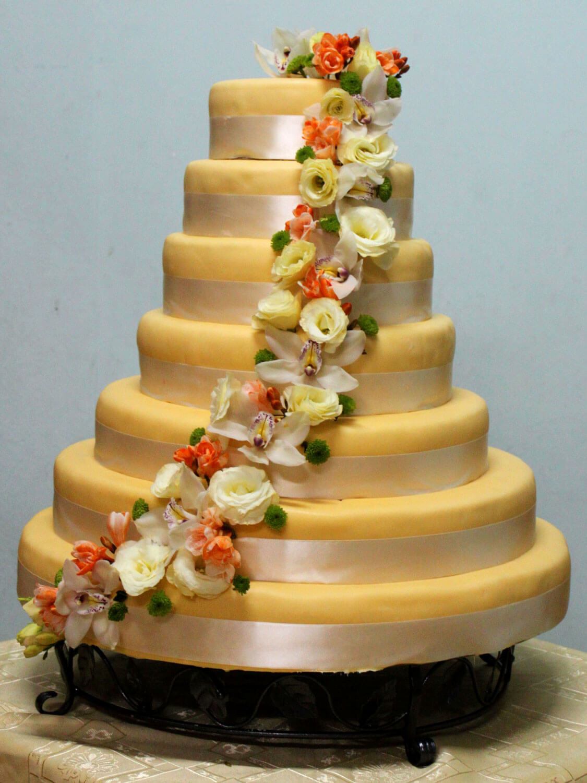 Tort Weselny P029